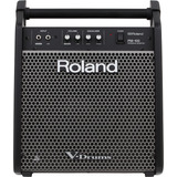 Monitor Personal Para V-drums 80w 1x10 PuLG Roland Pm-100