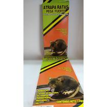 Trampa Para Rata