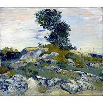 Lienzo Tela Paisaje Con Rocas Vincent Van Gogh Poster 50x50
