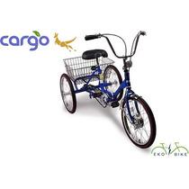 Triciclo Eléctrico Eko Bike Cargo
