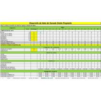 Corrida Financiera Para Proyecto De Bovinos Doble Propósito