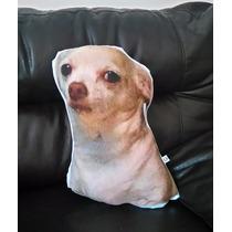 Cojín Decorativo Perro Chihuahua Meme Facebook