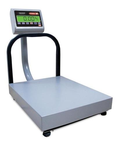 Báscula Industrial Digital Torrey Eqb 100 Kg Con Mástil 110v/220v Gris