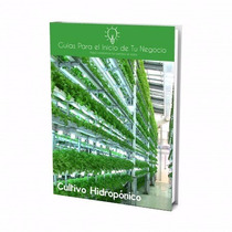 Guía Para Abrir Negocio De Cultivo Hidroponico