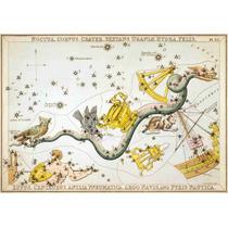 Lienzo Tela Constelaciones Sur Varias Año 1825 50 X 72 Cm