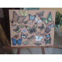 Pintura Al Oleo Mariposas