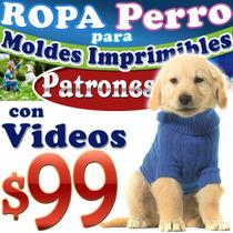 Como Hacer Ropa Para Perros Patrones Y Moldes Imprimibles