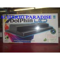 Lampara Dolphin De Led Luz Blanca Y Actinia. Jlp