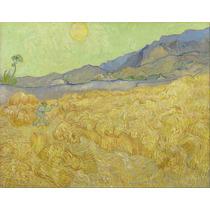 Lienzo Campo De Trigo Vincent Van Gogh Sin Fecha 50 X 63 Cm