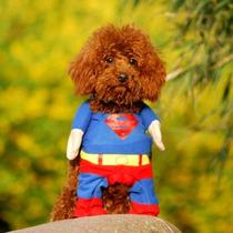 Disfraz/traje Superman(talla Chica-m) Los Mejores Precios!!