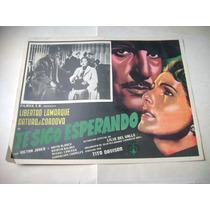 Te Sigo Esperando Libertad Lamarque Lobby Card Cartel Poster