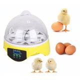 Incubadora Mini  7 Huevos Gallina Pollo Pato Aves