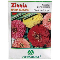 Semilla P/siembra Zinnia Elegans