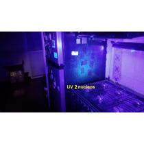 Lampara Linterna Uv Ultravioleta Wf-502b 3 Watts 2 Nucleos