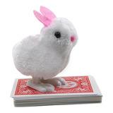 Conejo De Juguete Extraño Nuevos Niños En Busca De Una Licen