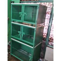Modulo Para 5 Jaulas Veterinaria Y Estetica Canina