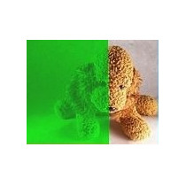 Polarizado Verde Decorativo P Cristal Residencial Maa