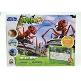 Hábitat De Hormigas Vivas Del Tío Milton Ant Farm