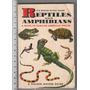 Reptiles Y Anfibios, En Ingles, Incluye Envio