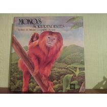 Libro Tridimensional Monos Sorprendentes Antiguo