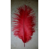 Pluma De Avestruz De 30-35 Cm Color Rojo,no Incluye Envio