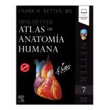 Mini-netter Atlas De Anatomía Humana 7a Libroriginal Y Nuevo