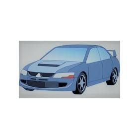 Gestor Y Asesor Profesional Vehicular