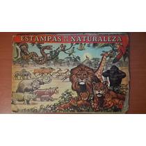 Album Estampas De La Naturaleza Kelloggs Corn Flakes