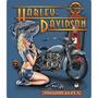 Harley Davidson Pinup Lamina Poster Resaltado Retro Vintage