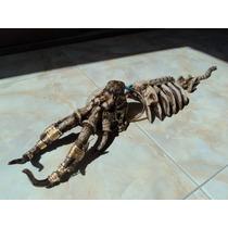 Adorno Para Acuario Esqueleto De Mamuth