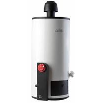 Boiler Calentador Gas Lp Calorex Con Envio Gratis Plcg-10