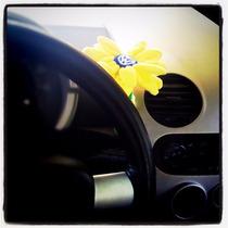 Flor Decorativa Para Tablero De Vw Beetle Varios Colores