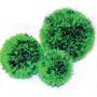 Planta Acuario Bola 17 Cm Diametro Verde Omm