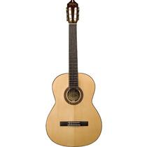 Guitarra Washburn Clasica Wc750sw