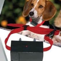 Collar Antiladridos Perro Efectivo Practico