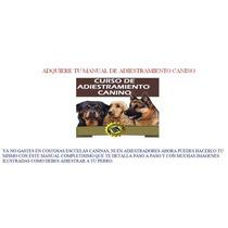 Adiestramiento Canino Manual