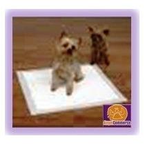 Tapetes Entrenadores De Baño Para Perros | Practiquísimos!
