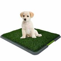 Doggy Patch Tapete Entrenador Cachorros Perros Potty, Tv