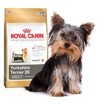 Alimento Perro Croqueta Royal Canin Yorkshire, A Domicilio