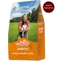 Alimento Para Perro César Millán Puppies 2kg
