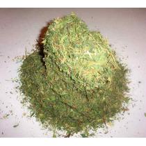 Heno De Alfalfa Deshidratada Para Chinchilla Cuyo Conejo
