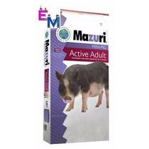 Alimento Mazuri Para Mini Pig Adulto 11.3kg