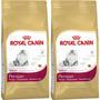 Royal Canin Persa Adulto - Bulto De 3.18 Kg