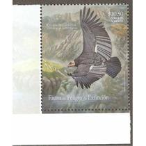 2009 Condor De California Fauna Peligro Extinción Vbf