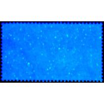 2613 Méx 2° E Cítricos Papel Estrella $10 Mint N H 1980