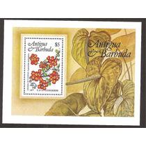 Hojita Flores Antigua Y Barbuda Caribe