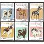 Estampillas De Nicaragua Fauna Perros Usadas