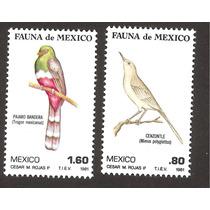 Fauna De Mexico, Aves 1981 Czenzontle Pajaro Bandera