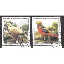 Cuba Aves, Faisan Fauna