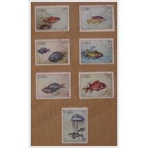 Set 7 Timbres Estampillas Postales Serie - Peces - Cuba 1969